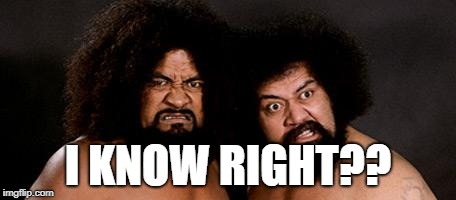 samoans | I KNOW RIGHT?? | image tagged in samoans | made w/ Imgflip meme maker