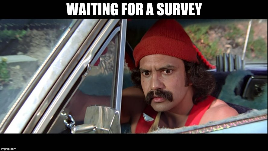 Cheech | WAITING FOR A SURVEY | image tagged in cheech | made w/ Imgflip meme maker