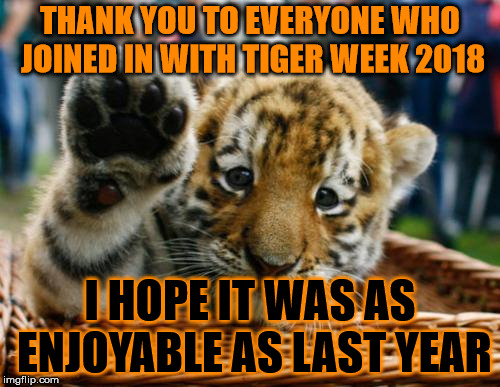 Thank you! | THANK YOU TO EVERYONE WHO JOINED IN WITH TIGER WEEK 2018 I HOPE IT WAS AS ENJOYABLE AS LAST YEAR | image tagged in memes,tiger week,tiger week 2018,tigerlegend1046,thank you | made w/ Imgflip meme maker