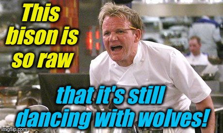 Gordon Ramsey | This bison is so raw that it's still dancing with wolves! | image tagged in gordon ramsey,memes,evilmandoevil,repost,funny | made w/ Imgflip meme maker