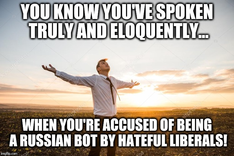 Ha! | YOU KNOW YOU'VE SPOKEN TRULY AND ELOQUENTLY... WHEN YOU'RE ACCUSED OF BEING A RUSSIAN BOT BY HATEFUL LIBERALS! | image tagged in memes,hateful liberals,russian bot | made w/ Imgflip meme maker
