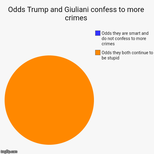 Odds Trump and Giuliani confess to more crimes | Odds they both continue to be stupid , Odds they are smart and do not confess to more crime | image tagged in funny,pie charts | made w/ Imgflip chart maker