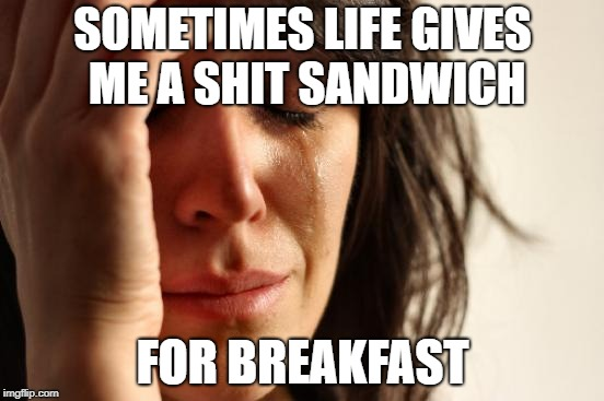 Some days are like that! | SOMETIMES LIFE GIVES ME A SHIT SANDWICH FOR BREAKFAST | image tagged in memes,first world problems,breakfast,shit,bad day | made w/ Imgflip meme maker