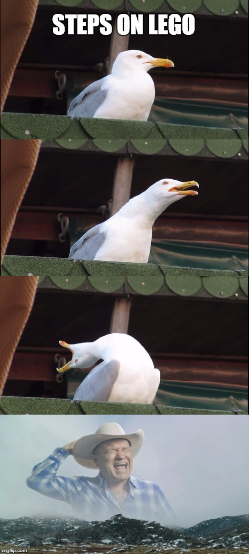 I guess the Inhaling Seagull meme is big enough for me to use. | STEPS ON LEGO | image tagged in memes,inhaling seagull | made w/ Imgflip meme maker