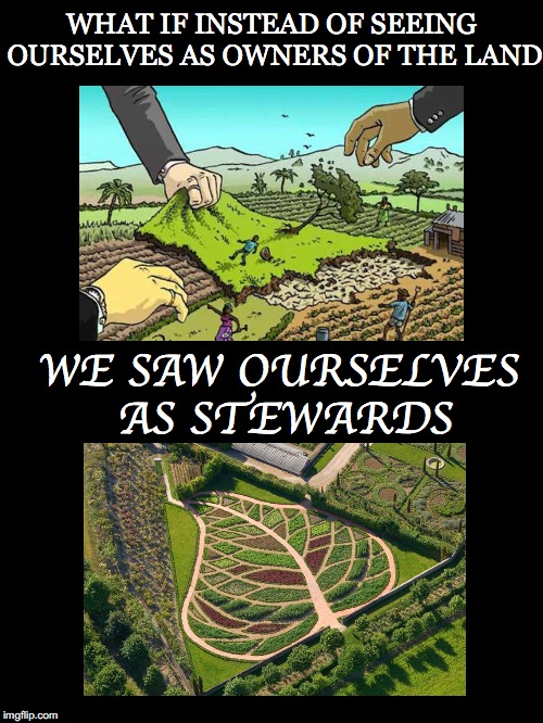 Shift In Perspective | WHAT IF INSTEAD OF SEEING OURSELVES AS OWNERS OF THE LAND WE SAW OURSELVES AS STEWARDS | image tagged in land,ownership,stewards,synergistic,sustainable,permaculture | made w/ Imgflip meme maker