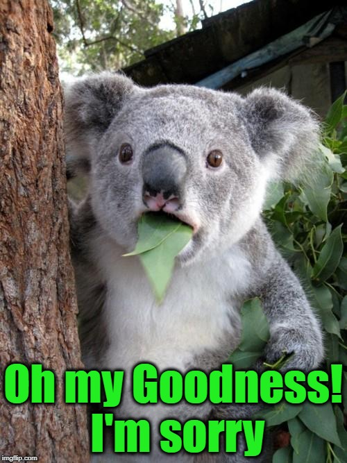 Surprised Koala Meme | Oh my Goodness! I'm sorry | image tagged in memes,surprised koala | made w/ Imgflip meme maker
