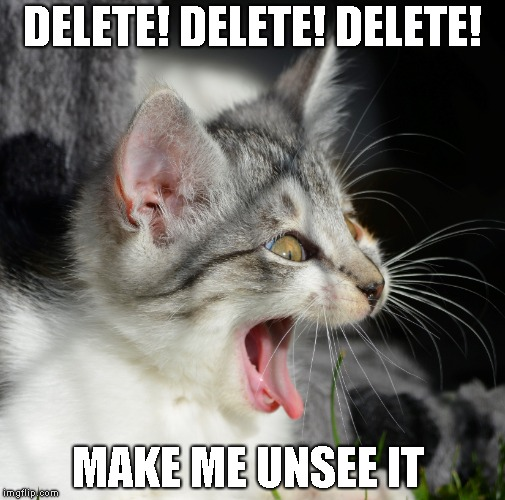 Make Me Unsee This NOW! | DELETE! DELETE! DELETE! MAKE ME UNSEE IT | image tagged in unsee,delete,horrible sight,mental bleach,awful | made w/ Imgflip meme maker