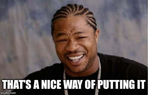 Yo Dawg Heard You Meme | THAT'S A NICE WAY OF PUTTING IT | image tagged in memes,yo dawg heard you | made w/ Imgflip meme maker