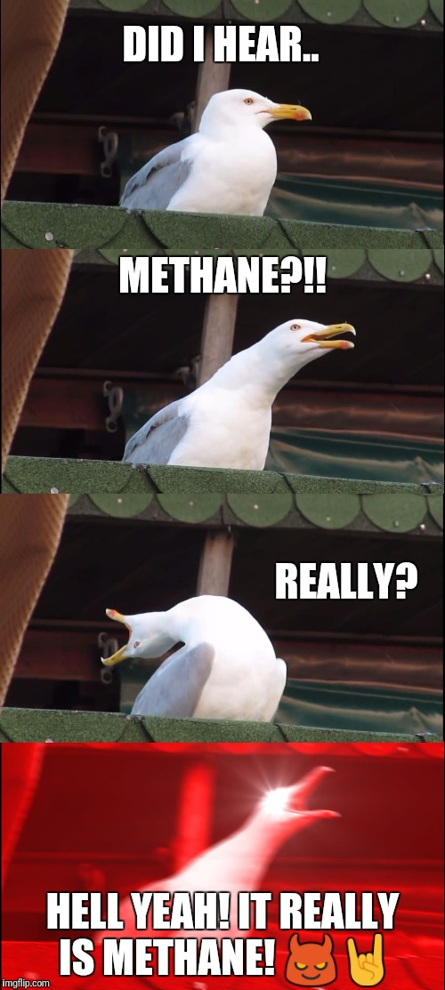 Inhaling Seagull Meme | DID I HEAR.. METHANE?!! REALLY? HELL YEAH! IT REALLY IS METHANE!  | image tagged in memes,inhaling seagull | made w/ Imgflip meme maker