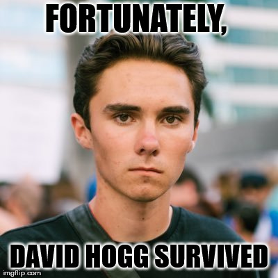 David Hogg | FORTUNATELY, DAVID HOGG SURVIVED | image tagged in david hogg | made w/ Imgflip meme maker