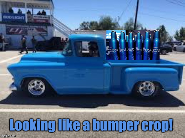 Looking like a bumper crop! | made w/ Imgflip meme maker