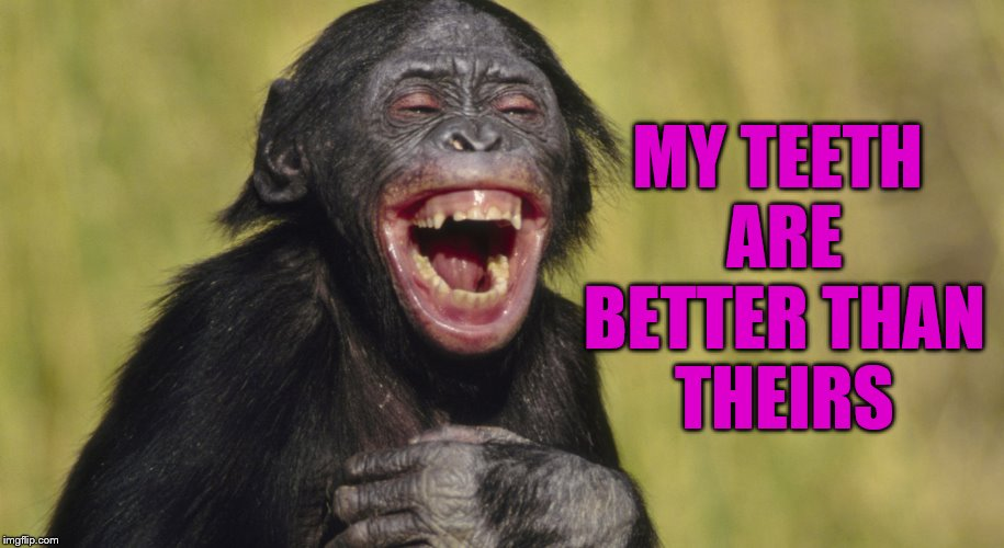 laughing monkey,memes | MY TEETH ARE BETTER THAN THEIRS | image tagged in laughing monkey,memes | made w/ Imgflip meme maker