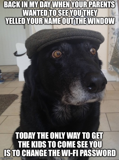 Back In My Day Dog | BACK IN MY DAY WHEN YOUR PARENTS WANTED TO SEE YOU THEY YELLED YOUR NAME OUT THE WINDOW TODAY THE ONLY WAY TO GET THE KIDS TO COME SEE YOU I | image tagged in back in my day dog | made w/ Imgflip meme maker
