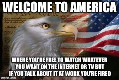Don't Mind Me. Just Planning My Trip to Washington DC. | WELCOME TO AMERICA WHERE YOU'RE FREE TO WATCH WHATEVER YOU WANT ON THE INTERNET OR TV BUT IF YOU TALK ABOUT IT AT WORK YOU'RE FIRED | image tagged in american eagle,memes,funny,so true,true story | made w/ Imgflip meme maker