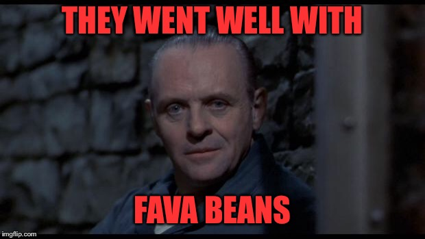 hannibal lecter silence of the lambs | THEY WENT WELL WITH FAVA BEANS | image tagged in hannibal lecter silence of the lambs | made w/ Imgflip meme maker