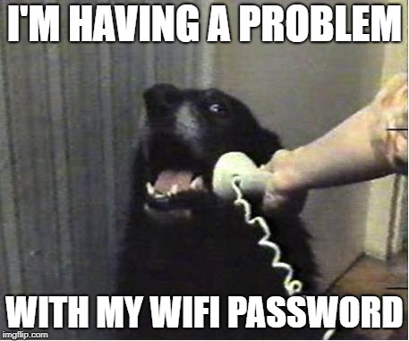 Yes this is dog | I'M HAVING A PROBLEM WITH MY WIFI PASSWORD | image tagged in yes this is dog | made w/ Imgflip meme maker