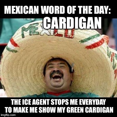 Mexican Word of the Day (LARGE) | CARDIGAN THE ICE AGENT STOPS ME EVERYDAY TO MAKE ME SHOW MY GREEN CARDIGAN | image tagged in mexican word of the day large | made w/ Imgflip meme maker