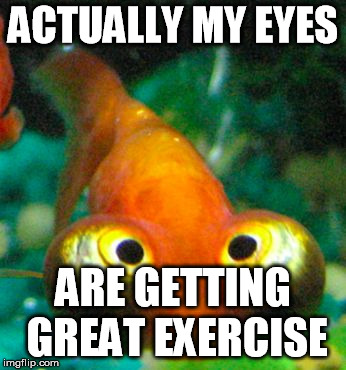 bug eye guppy | ACTUALLY MY EYES ARE GETTING GREAT EXERCISE | image tagged in bug eye guppy | made w/ Imgflip meme maker
