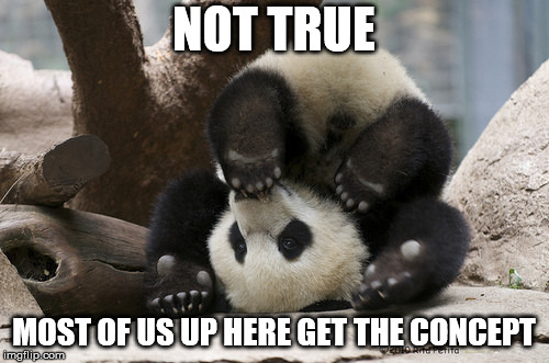 Upside down panda | NOT TRUE MOST OF US UP HERE GET THE CONCEPT | image tagged in upside down panda | made w/ Imgflip meme maker
