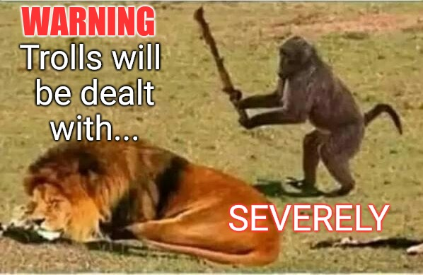 WARNING SEVERELY Trolls will be dealt with... | image tagged in warning | made w/ Imgflip meme maker