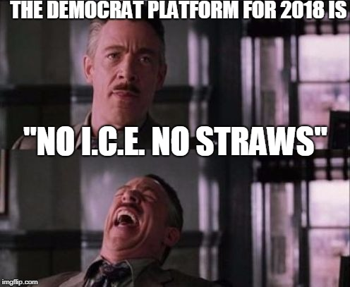 "The Democrat platform for 2018? |  THE DEMOCRAT PLATFORM FOR 2018 IS; ""NO I.C.E. NO STRAWS"" 