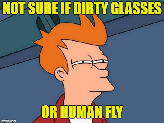 Futurama Fry Meme | NOT SURE IF DIRTY GLASSES OR HUMAN FLY | image tagged in memes,futurama fry | made w/ Imgflip meme maker