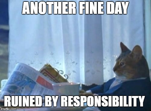I Should Buy A Boat Cat | ANOTHER FINE DAY RUINED BY RESPONSIBILITY | image tagged in memes,i should buy a boat cat | made w/ Imgflip meme maker