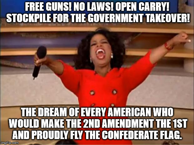 Let's give everyone a gun so everyone will be safer | FREE GUNS! NO LAWS! OPEN CARRY! STOCKPILE FOR THE GOVERNMENT TAKEOVER! THE DREAM OF EVERY AMERICAN WHO WOULD MAKE THE 2ND AMENDMENT THE 1ST  | image tagged in memes,oprah you get a,gun,white resurgence,paranoia | made w/ Imgflip meme maker