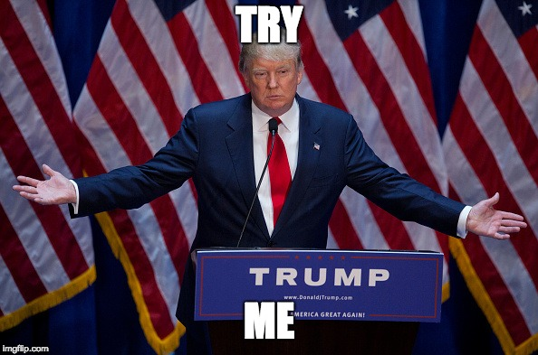 Donald Trump | TRY ME | image tagged in donald trump | made w/ Imgflip meme maker