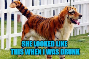 SHE LOOKED LIKE THIS WHEN I WAS DRUNK | made w/ Imgflip meme maker