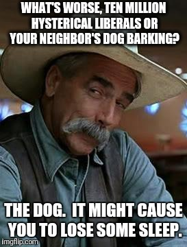 What's worse? | WHAT'S WORSE, TEN MILLION HYSTERICAL LIBERALS OR YOUR NEIGHBOR'S DOG BARKING? THE DOG.  IT MIGHT CAUSE YOU TO LOSE SOME SLEEP. | image tagged in sam elliott,hysterical liberals,dog barking,sleep | made w/ Imgflip meme maker