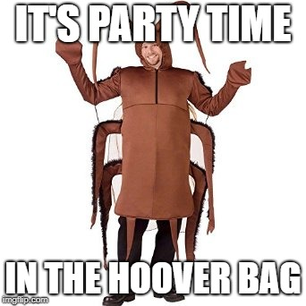 Cockroach | IT'S PARTY TIME IN THE HOOVER BAG | image tagged in cockroach | made w/ Imgflip meme maker