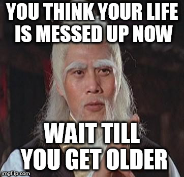 Wise Kung Fu Master | YOU THINK YOUR LIFE IS MESSED UP NOW WAIT TILL YOU GET OLDER | image tagged in wise kung fu master | made w/ Imgflip meme maker