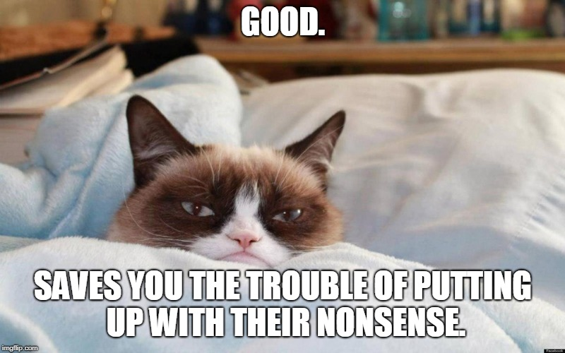 grumpy cat bed | GOOD. SAVES YOU THE TROUBLE OF PUTTING UP WITH THEIR NONSENSE. | image tagged in grumpy cat bed | made w/ Imgflip meme maker