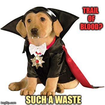 TRAIL OF BLOOD? SUCH A WASTE | made w/ Imgflip meme maker