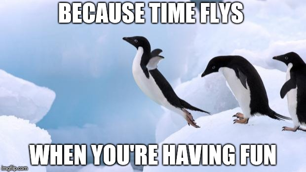 flying penguin | BECAUSE TIME FLYS WHEN YOU'RE HAVING FUN | image tagged in flying penguin | made w/ Imgflip meme maker
