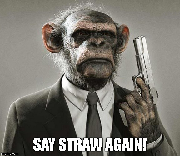 SAY STRAW AGAIN! | made w/ Imgflip meme maker