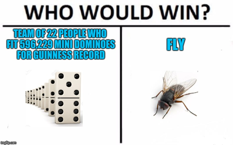 True story. The fly screw up the record attempt | TEAM OF 22 PEOPLE WHO FIT 596,229 MINI DOMINOES FOR GUINNESS RECORD FLY | image tagged in memes,who would win | made w/ Imgflip meme maker