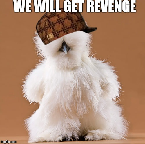 chicken | WE WILL GET REVENGE | image tagged in chicken,scumbag | made w/ Imgflip meme maker