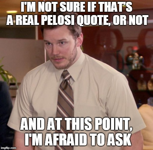 Afraid To Ask Andy Meme | I'M NOT SURE IF THAT'S A REAL PELOSI QUOTE, OR NOT AND AT THIS POINT, I'M AFRAID TO ASK | image tagged in memes,afraid to ask andy | made w/ Imgflip meme maker