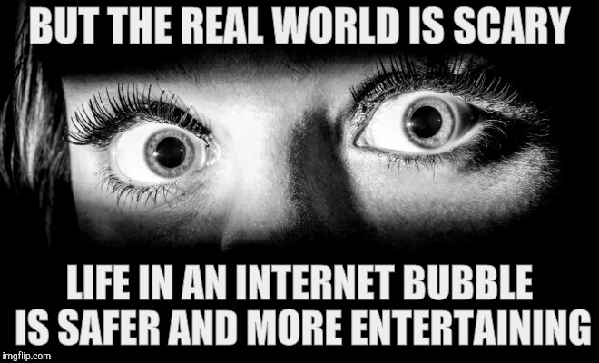 BUT THE REAL WORLD IS SCARY LIFE IN AN INTERNET BUBBLE IS SAFER AND MORE ENTERTAINING | made w/ Imgflip meme maker