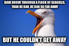 DAVE DROVE THROUGH A FLOCK OF SEAGULLS, THAN HE RAN, HE RAN SO FAR AWAY BUT HE COULDN'T GET AWAY | made w/ Imgflip meme maker