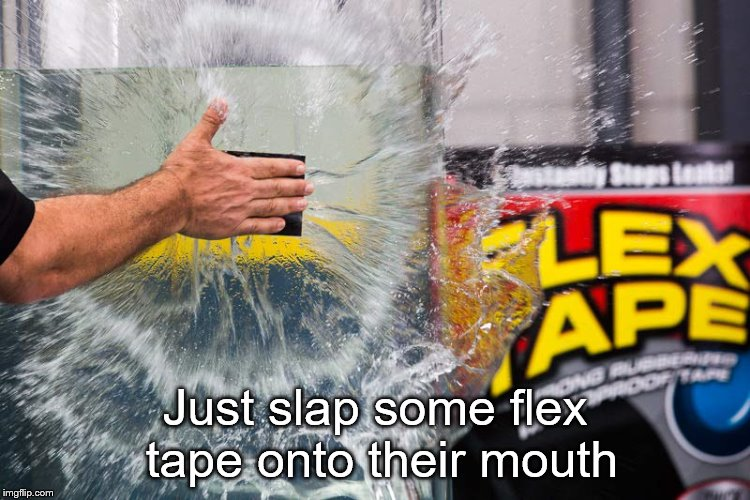 Just slap some flex tape onto their mouth | made w/ Imgflip meme maker