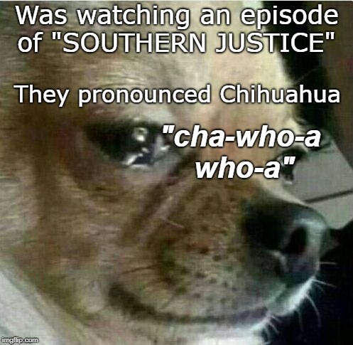 "Tennessee,  Chihuahua Cha-who-a-who-a | Was watching an episode of ""SOUTHERN JUSTICE"" ""cha-who-a who-a"" They pronounced Chihuahua 