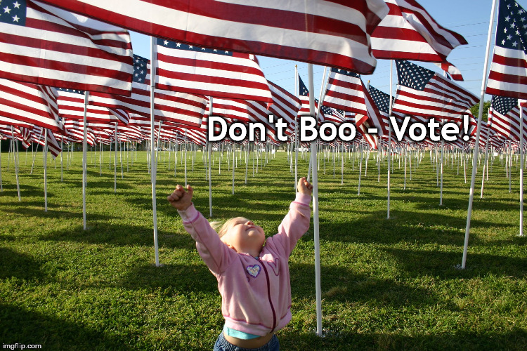 Don't Boo - Vote! | image tagged in dont boo flags vote | made w/ Imgflip meme maker