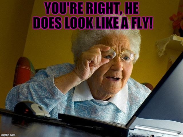 Grandma Finds The Internet Meme | YOU'RE RIGHT, HE DOES LOOK LIKE A FLY! | image tagged in memes,grandma finds the internet | made w/ Imgflip meme maker