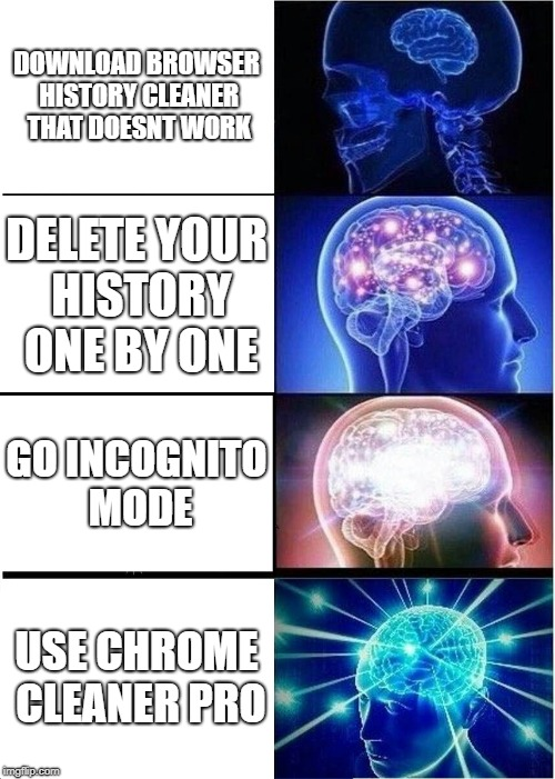 Deleting your browsing history | DOWNLOAD BROWSER HISTORY CLEANER THAT DOESNT WORK DELETE YOUR HISTORY ONE BY ONE GO INCOGNITO MODE USE CHROME CLEANER PRO | image tagged in memes,expanding brain | made w/ Imgflip meme maker
