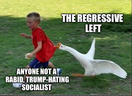 THE REGRESSIVE LEFT ANYONE NOT A RABID, TRUMP-HATING SOCIALIST | image tagged in goose chase | made w/ Imgflip meme maker