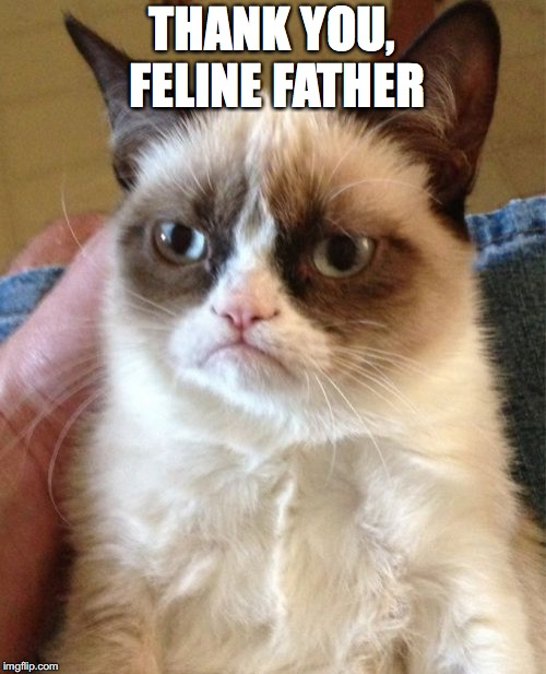 Grumpy Cat Meme | THANK YOU, FELINE FATHER | image tagged in memes,grumpy cat | made w/ Imgflip meme maker