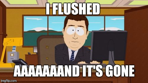 Aaaaand Its Gone Meme | I FLUSHED AAAAAAAND IT'S GONE | image tagged in memes,aaaaand its gone | made w/ Imgflip meme maker